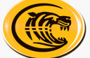 Colac-Tigers-logo