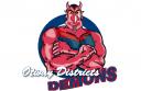 Otway-Districts-Demons