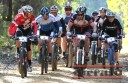 Competitors in the men's solo category at the Forrest Six-Hour mountain bike marathon start steadily in calm weather, before wind set in.