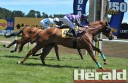 South Australian jockey Kane Post rides Tuscan Ranger to victory ahead of Black Coupez and Luckzat in race four of Colac Turf Club's annual Christmas race meeting.