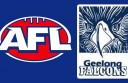 AFL-and-Geelong-Falcon
