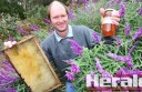 Barongarook beekeeper Laurence Towers says honey bees need conditions to be perfect to produce honey.