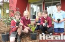 Colac school children William McNabb, Taylah Gleeson, Jewel Sibley, Siobhan Benson and Heath Jenson showed their gardening skills at a Youth Health Hub tree planting.