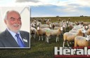 John Verrall of Australian Lamb Group has cut lamb meat exports to Russia.