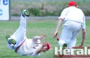 Alvie cricketer Spencer Williamson puts down a catch during the Swans' round 14 clash against Irrewarra. Alvie won the match with two wickets in hand to jump to second spot on the ladder.