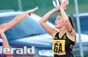 COugars-netballer-for-slider