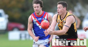 Lochie Veale, left, could return to the Tigers' line-up.