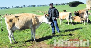 SWITCHING SIDES: Glen Armistead is among a host of Colac district farmers who have stopped supplying Murray Goulburn since the company cut milk prices.