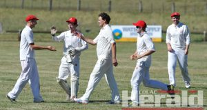 Alvie cricketers, from left, Andre DeLorenzo, Liam McGuane, Luke McLennan, Hayden Hickey and Zac Parker celebrate the Swans' commanding win against Apollo Bay.